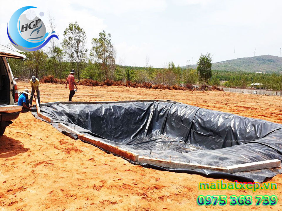 Bạt Nhựa HDPE Lót Ao Hồ Chứa Nước Tưới Cây Nuôi Cá Tại Biên Hòa