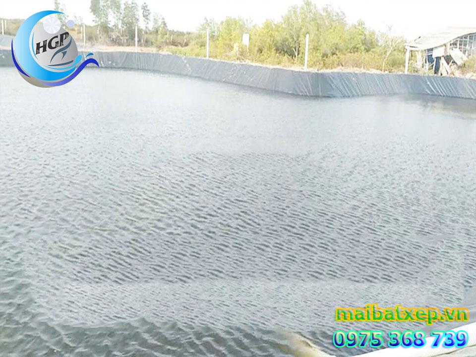 Bạt Nhựa HDPE Lót Ao Hồ Chứa Nước Nuôi Cá Tôm Tại Phú Quốc