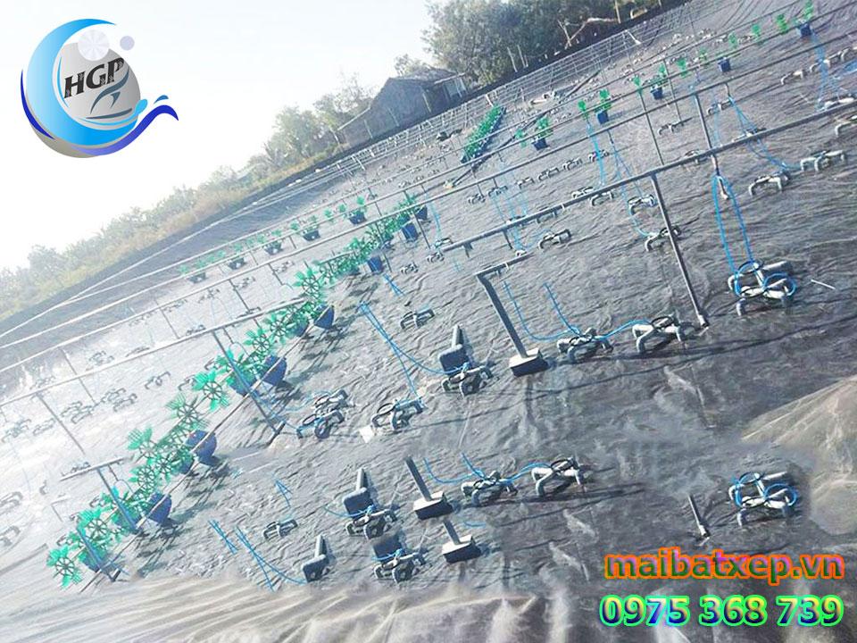 Bạt Nhựa HDPE Lót Ao Hồ Chứa Nước Nuôi Cá Tôm Tại Phú Yên