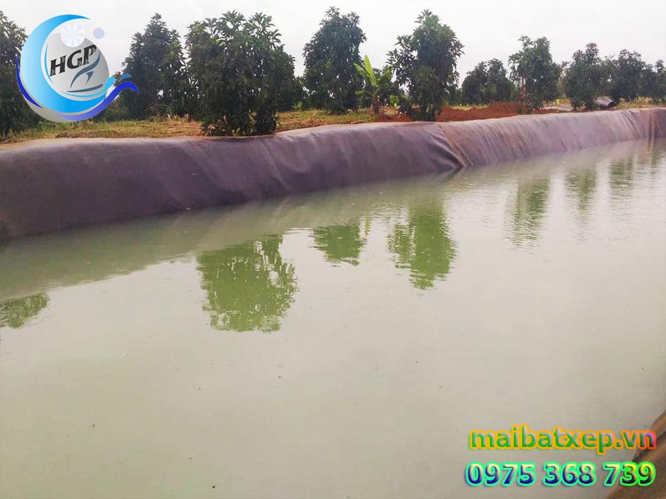 Bạt Lót Hồ chứa Nước Tưới Cây Nuôi Cá Tại Đồng Nai