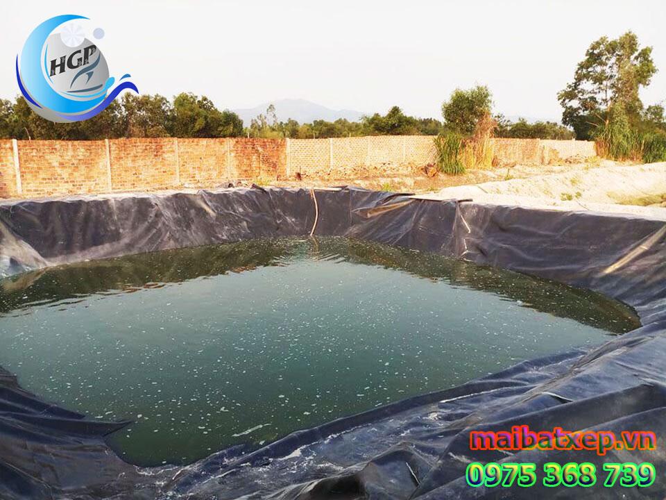 Bạt Nhựa HDPE Lót Ao Hồ Chứa Nước Tưới Cây Nuôi Cá Tại Đồng Nai