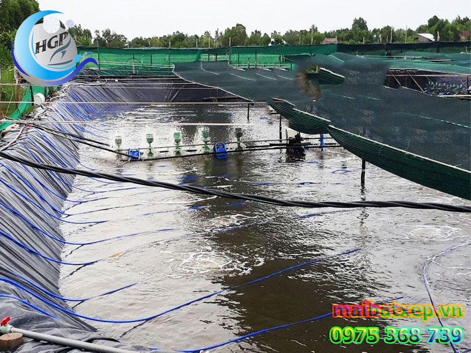 Bạt Nhựa HDPE Lót Ao Hồ Chứa Nước Nuôi Cá Tôm Tại Ninh Thuận