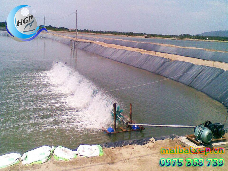 Bạt Nhựa HDPE Lót Ao Hồ Chứa Nước Nuôi Cá Tôm Tại Bình Thuận